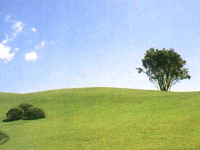 袋田の滝カントリークラブ(旧:鷹彦スリーカントリー)