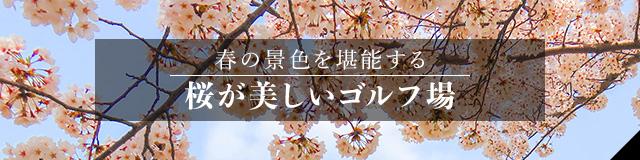 桜が美しいゴルフ場特集2020